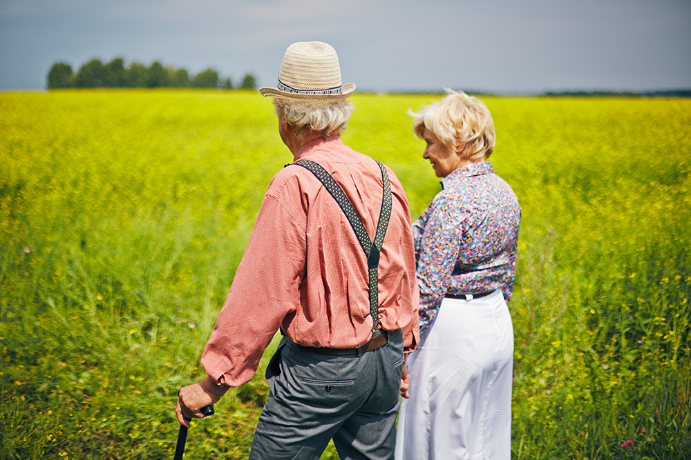 Elderly couple holding hands in a cornfield